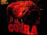 Avatar de Cobra